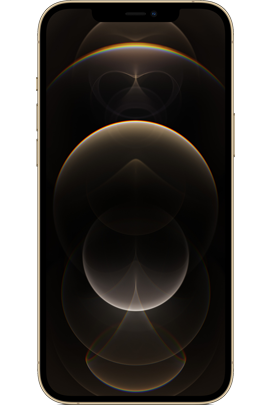iPhone_12_Pro_Max_Gold_12.png